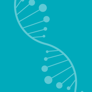 Ovarian Cancer Australia Support Resources And Factsheets